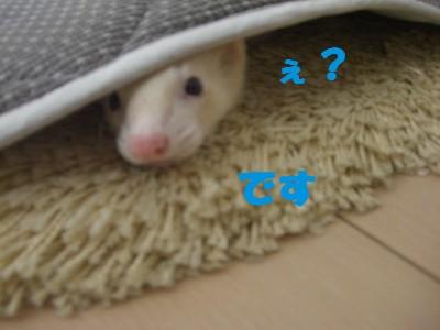 お風呂01 2009・05・03
