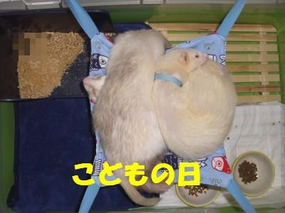 こどもの日00 2009・05・05