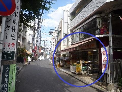 tamagawa (1)