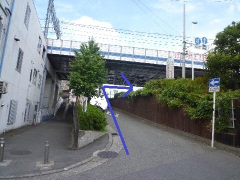 tamagawa (6)
