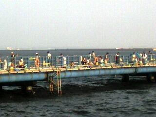 20080721c.jpg