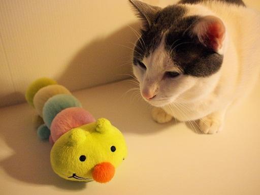 おもちゃとプラム