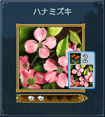 01_ハナミズキ