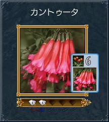 05_カントゥータ