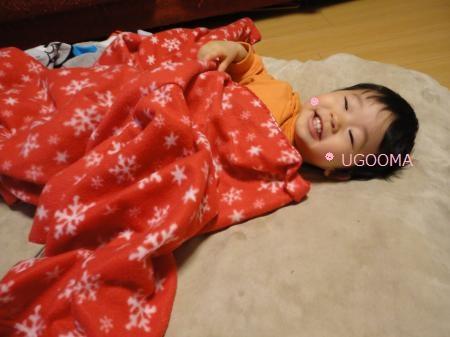 DSC08110_convert_20120213163608.jpg