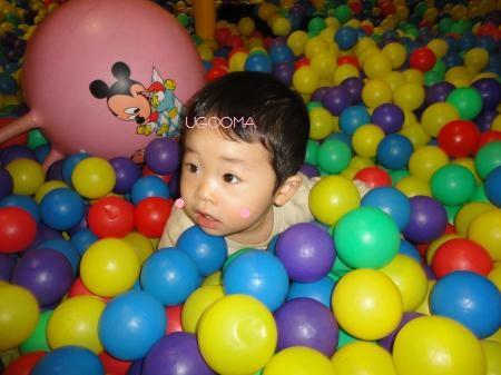 DSC08422_convert_20120313152103.jpg