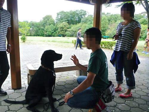 2011長岡公園750