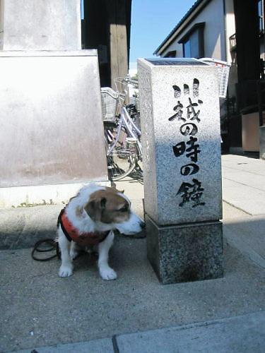 2011おでかけ543