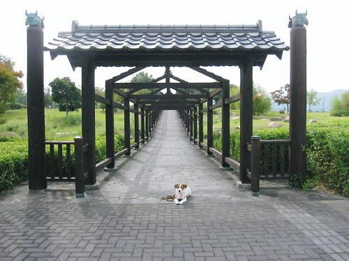 2011おでかけ419