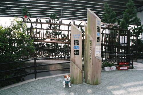 2011おでかけ467