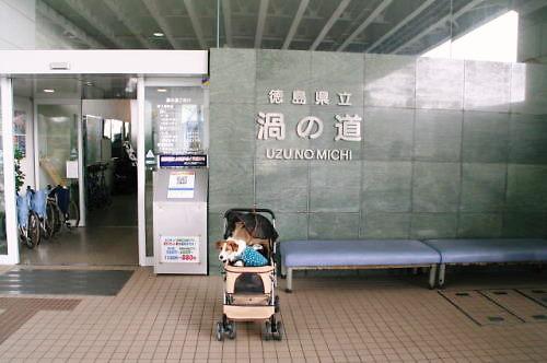 2011おでかけ470