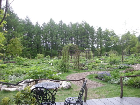 風のガーデン庭2