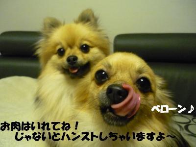 P1050325_convert_20090411211507.jpg