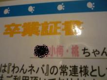P1080212_convert_20090630114754.jpg