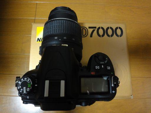 DSC01935_512.jpg
