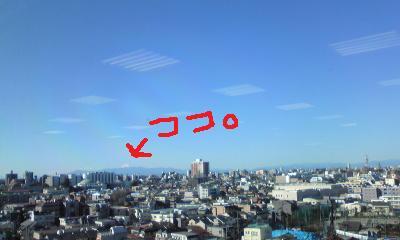Image778.jpg