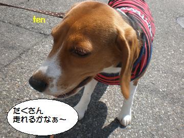 P4113634.jpg