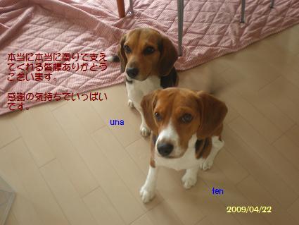 P4213895.jpg