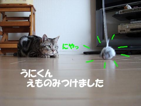 A041.jpg