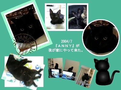 04-07-ANNY-BS.jpg