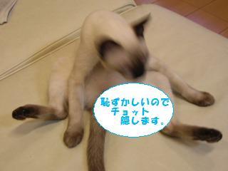 07-10-2-001-BS.jpg