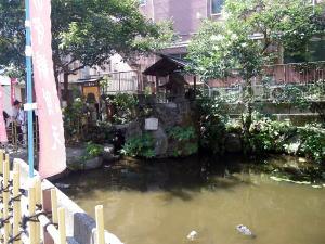 荒木町の策の池