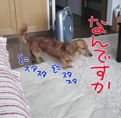 BLOG082802.jpg