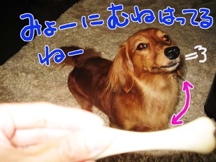 BLOG082804.jpg