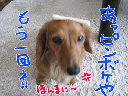 BLOG082806.jpg
