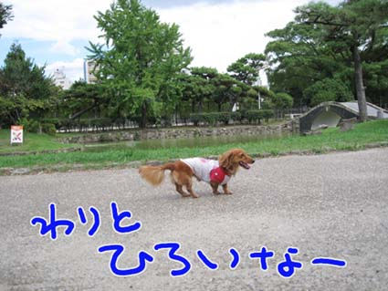 BLOG090106.jpg