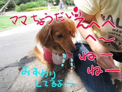 BLOG090107.jpg