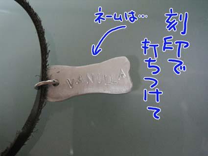 BLOG090201.jpg