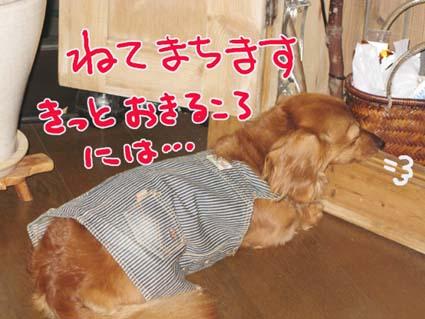 BLOG090207.jpg