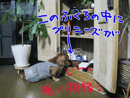 BLOG090208.jpg