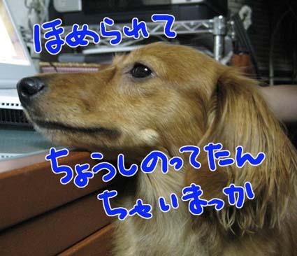 BLOG090301.jpg