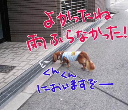 BLOG090308.jpg