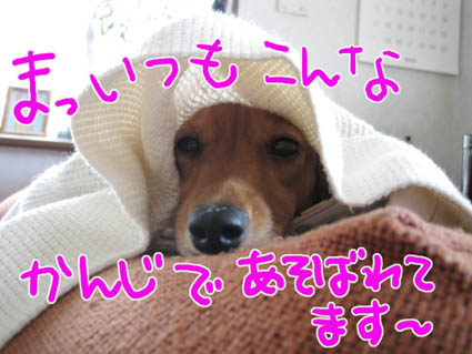 BLOG090607.jpg