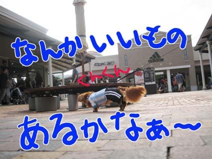 BLOG71504.jpg