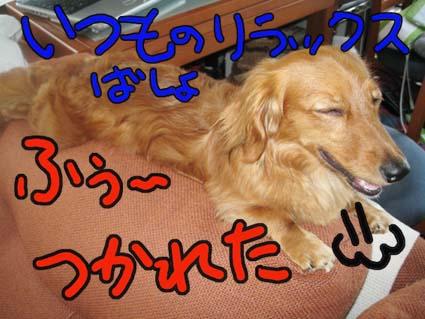 BLOG71506.jpg
