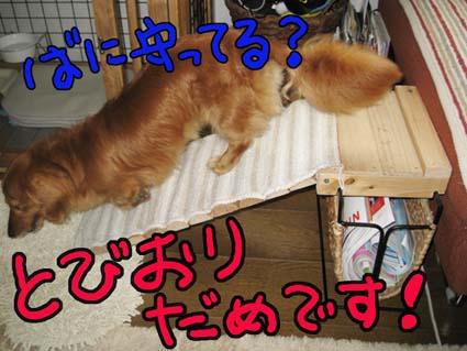 BLOG71701.jpg