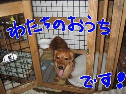 BLOG71702.jpg