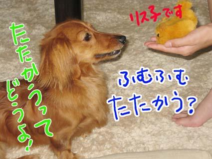 BLOG71901.jpg