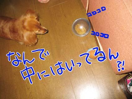 BLOG71902.jpg