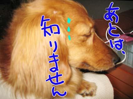 BLOG72204.jpg