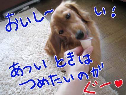 BLOG72301.jpg