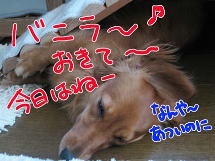 BLOG72304.jpg