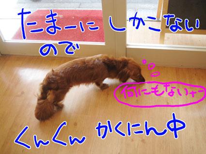 BLOG72502.jpg