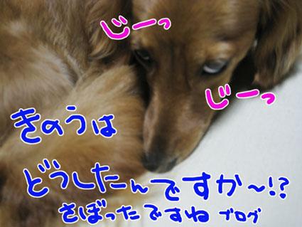 BLOG72901.jpg