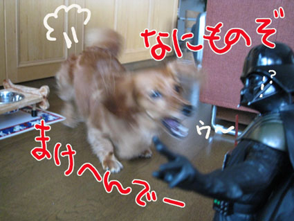 BLOG73003.jpg