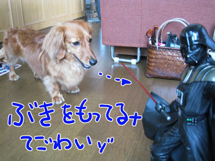BLOG73005.jpg